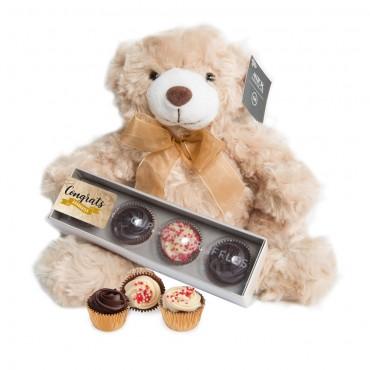 Teddy Bear w/ Cupcake Truffle Box