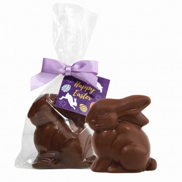 Easter Collection - Milk Chocolate Bunny